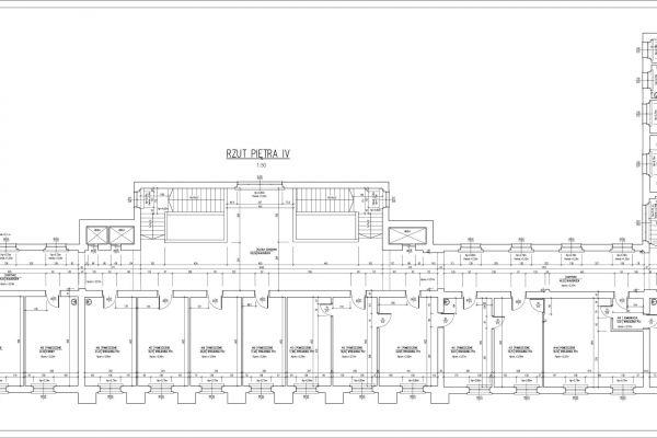 pitro-iv-mC16A8E58-A014-12EB-D66A-B2B7782EBA92.jpg